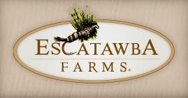 Escatawba Fly Fishing Virginia in the Alleghany Highlands
